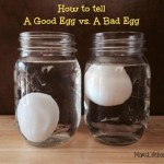 How to Tell if An Egg is Good or Bad