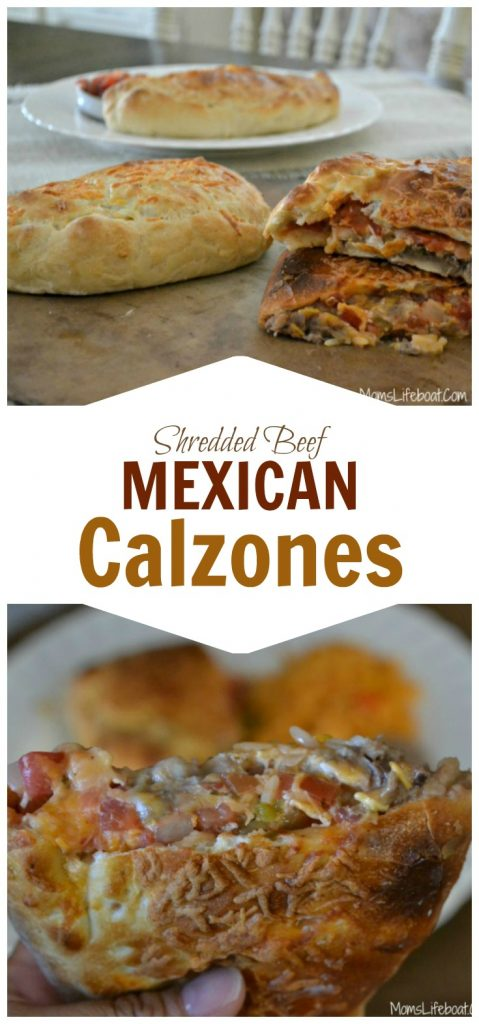 Mexican Calzone PF