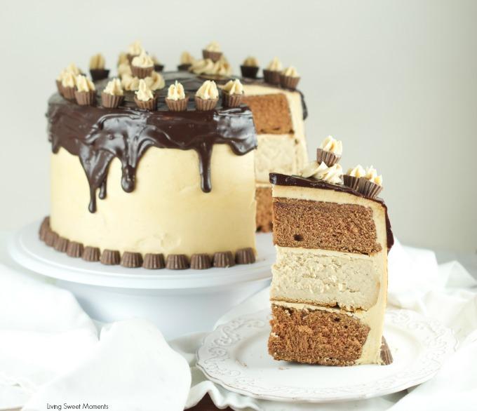 chocolate-peanut-butter-cheesecake-cake-4